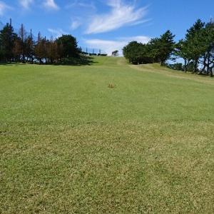 ゴルフ、ショートコース