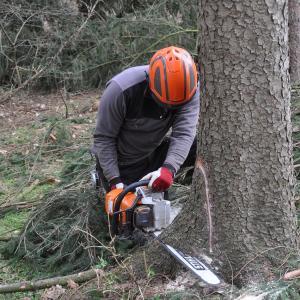 自衛官よりも亡くなっている林業従事者…
