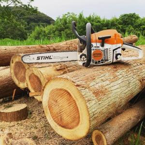 自伐型林業に参入して半年。身につけた「6つの技術」と、これからの課題