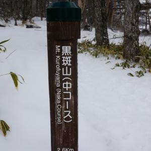 【その2】浅間山を見に高峰温泉へ【黒斑山】