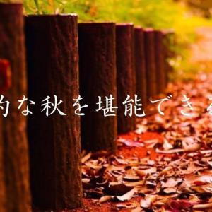 芸術的な秋を堪能できる映画5選。秋深き芸術家は何をする人ぞ