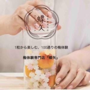 【京都観光】梅体験専門店「蝶矢」で100通りの梅酒作りを体験!