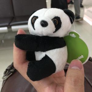 【上海】現地通貨は空港で使い切ろう