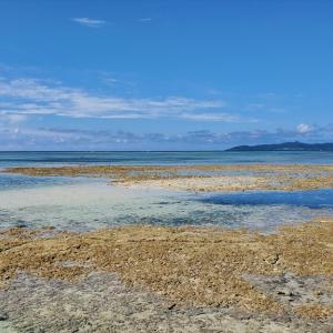 【竹富島】潮の干満時期を確認しよう