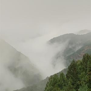 吉野山奥千本へ