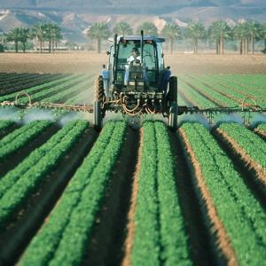 柔軟性とマヒとは紙一重!?無農国家・日本へヒタ走る知られざる農薬事情とは?