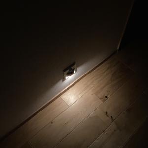 足元照明・階段照明