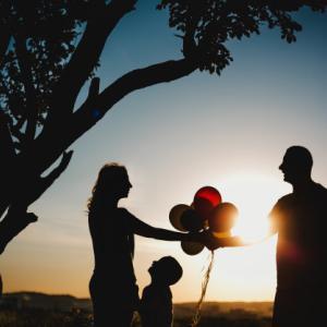 上がる生涯未婚率|共同養育マッチングはあり?