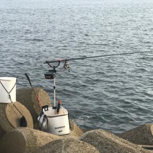 土曜は茨城で初釣行&日曜はホームで。