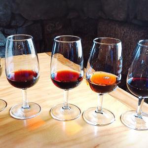 ポルトといえばポートワインの聖地 飲まない理由がみつからない 海外旅行/海外赴任/留学/駐在/卒業旅行