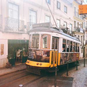 リスボンで美味しいベトナム料理に舌鼓! ポルトガル 海外旅行/海外赴任/留学/駐在