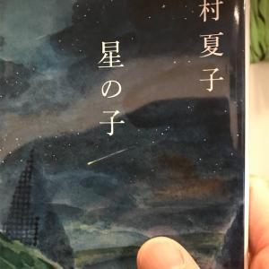 【本】今村夏子『星の子』~平易な文章と不穏な物語~