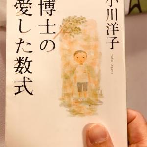 【小説】小川洋子『博士の愛した数式』~日だまりのような優しい物語~