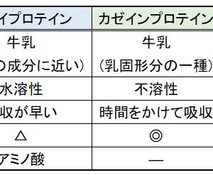 """ダイエットの必需品""""プロテイン""""の紹介"""