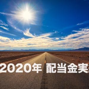 【注目】米国株投資を始めて1年半。2020年の配当金実績を公開!