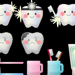 電動歯ブラシのサブスク GALLEIDO DENTAL MEMBER