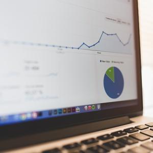 ブログ開始一ヶ月、30記事達成しました ~PVと収益を報告します ~