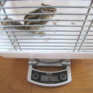 体重測定 6月21日
