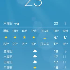 静岡への感謝が止まらない、、、