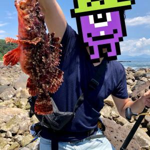 関東最後の秘境こと神奈川県の三ツ石にて、ついに爆釣成就なるか!?