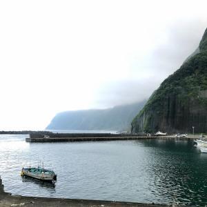 【八丈島釣りシリーズ】 洞輪沢漁港 夕まずめ #1