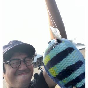 【八丈島釣りシリーズ】八重根港 朝まずめ #1