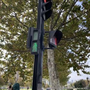 アゼルバイジャンの信号機!