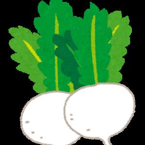 冬に家庭菜園をするなら何を植える?