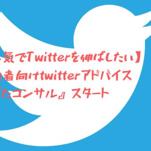 【本気でTwitterを伸ばしたい】初心者向けtwitterアドバイス『ばたコンサル』スタート