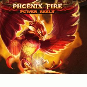 PHOENIX FIRE POWER REELS動画まとめ