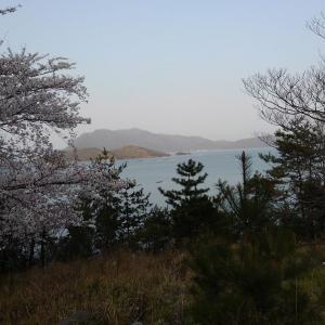 ノッコミ釣行in京都/福井(4/5~4/6)