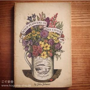 野原に咲くお花の本
