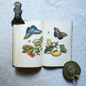 インゼル文庫351番、リア・ジビーラ・メーリアンの画集をショップにアップしました。