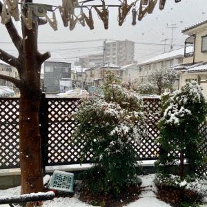 雪が降る!?