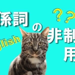 関係詞の非制限用法を解説!(例文と問題演習つき)【英文法】