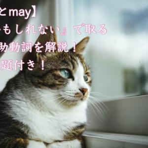 【英文法】助動詞「can」と「may」の細かい違いを徹底解説!問題演習つき!