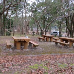 高知県黒潮町の入野松原キャンプ場/松原と海に囲まれ海水浴も楽しめる!