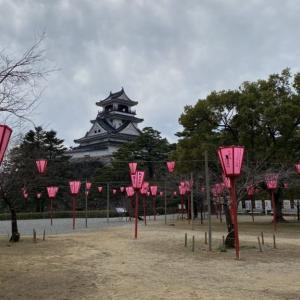 2020さくら✿開花情報/4月2日現在高知城三ノ丸広場は満開(^^)です!