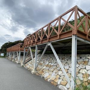 高知県柏島に一番近い/竜ケ浜キャンプ場