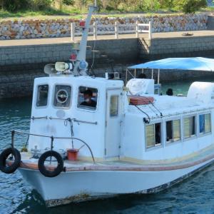 高知県竜串観光/ぜひグラスボートに乗ってください!