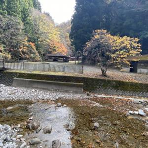 高知県の秘境にあるキャンプ場/べふ狭キャンプ場