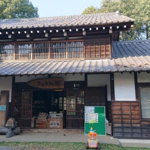 りん散歩#81〈所沢航空記念公園〜トトロの森編④〉