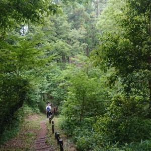 りん散歩#87〈森林と田園の緑区さんぽ編⑥〉