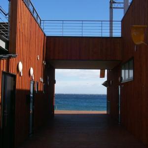 函館市の道の駅なとわ・えさんから海を望む