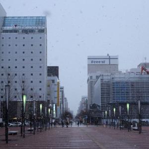 雪の旭川平和通り買物公園。旭川駅前から撮影