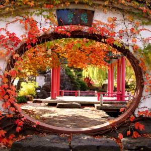 百合が原公園・世界の庭園の中国庭園「瀋芳園」の秋の紅葉風景