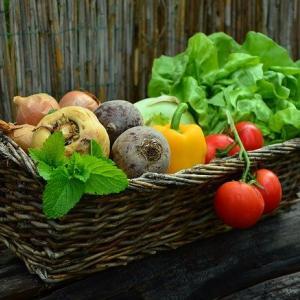 【有機野菜・オーガニック食品】安心安全な食事のため、まずは知ろう!