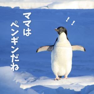 「ママはペンギン」という息子の例えが秀逸すぎる私の体