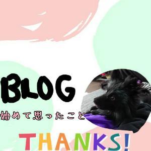 WordPressでブログをはじめて1ヶ月~感想とアクセス数~