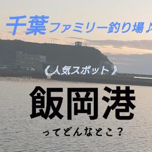 【千葉県】子供と釣りを楽しめる場所!旭市飯岡ってどんな感じ?